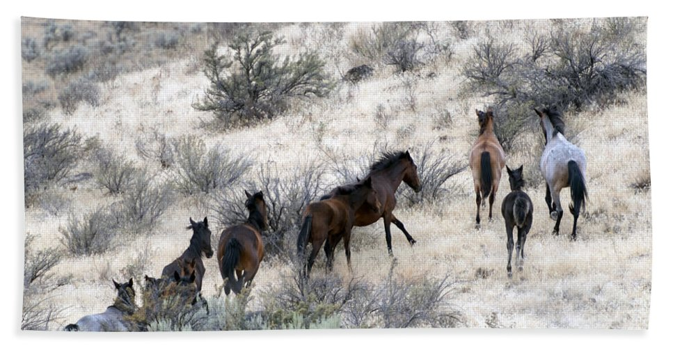 Horses Hand Towel featuring the photograph Fleeing up the Draw by Mike Dawson