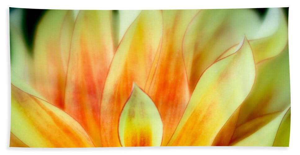 Blooms Bath Sheet featuring the photograph Flickering Petals by Greg Nyquist