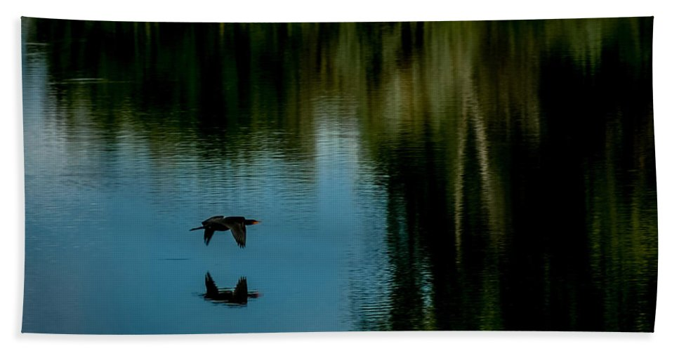Cormorant Hand Towel featuring the photograph Flight Of The Cormorant by Ernie Echols