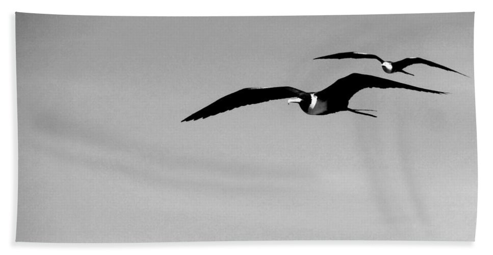 Anne Mott Hand Towel featuring the photograph Flight Of The Frigates by Anne Mott