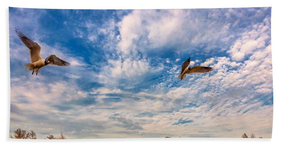 Nola Bath Towel featuring the photograph Flight School by Steve Harrington