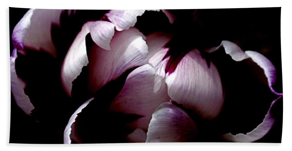 Tulip Bath Towel featuring the photograph Floral Symmetry by Rona Black