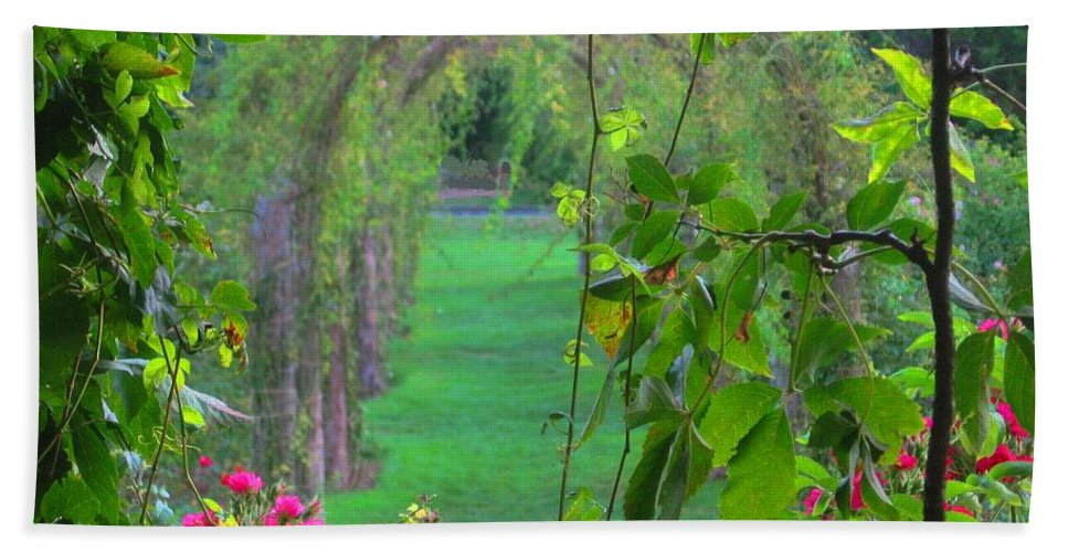 Garden Hand Towel featuring the photograph Floral Window by Ray Konopaske
