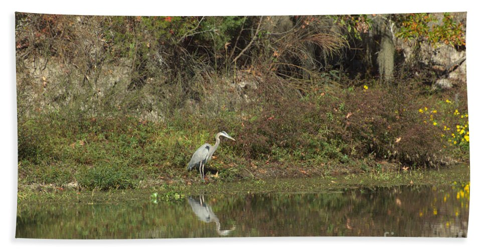 Water Hand Towel featuring the photograph Florence Marina State Park by Donna Brown