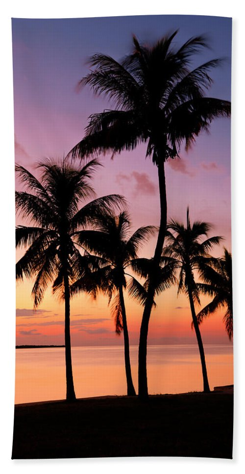 Sunset Bath Towel featuring the photograph Florida Breeze by Chad Dutson