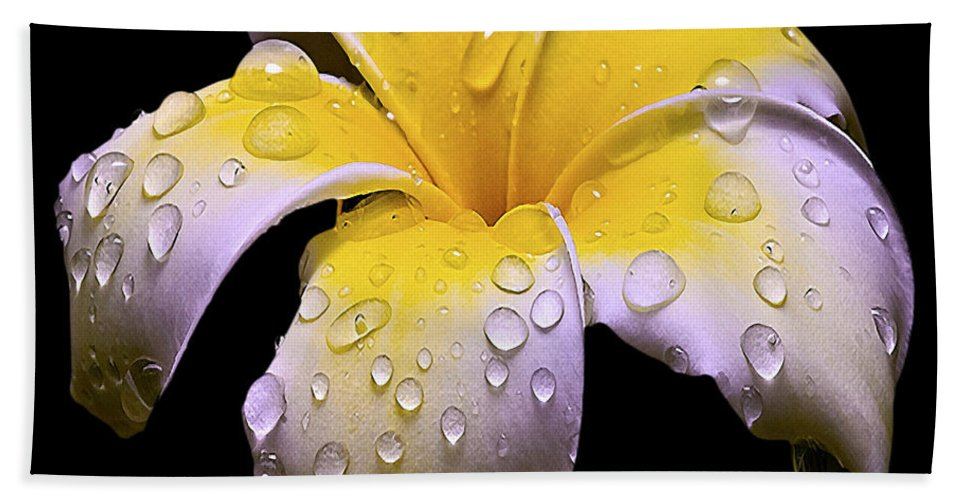 Flower Bath Sheet featuring the photograph Flower 171 by Ingrid Smith-Johnsen