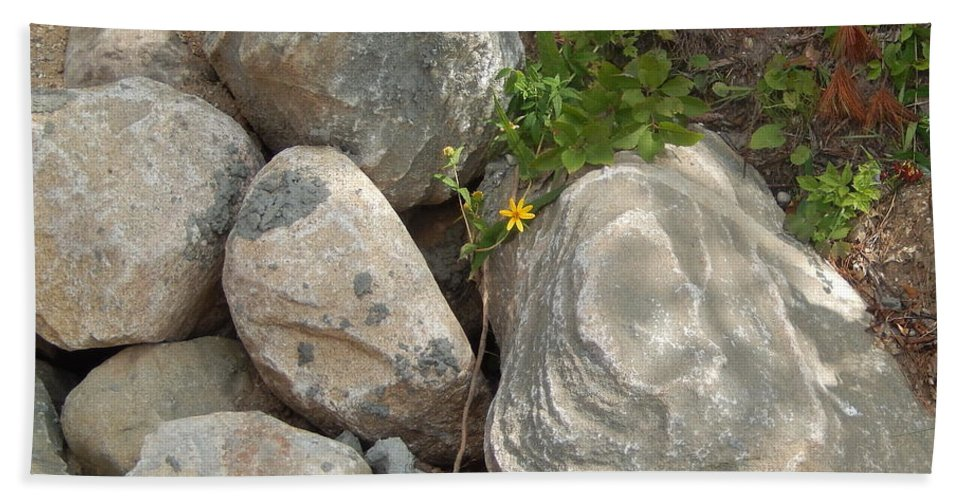Tiny Bath Sheet featuring the photograph Flower And Rocks by Susan Wyman