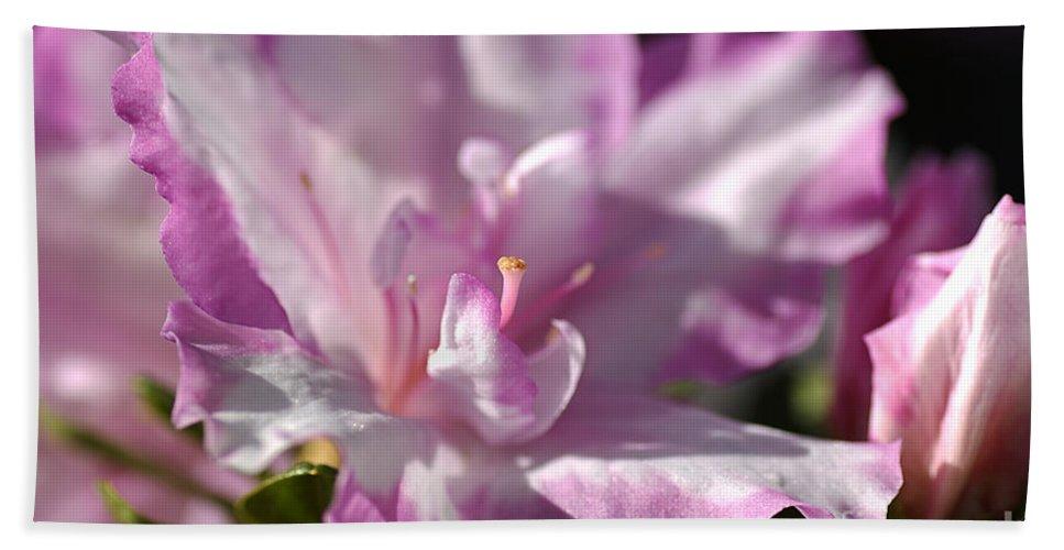 Flower Bath Sheet featuring the photograph Flower--azalea-white-pink by Joy Watson