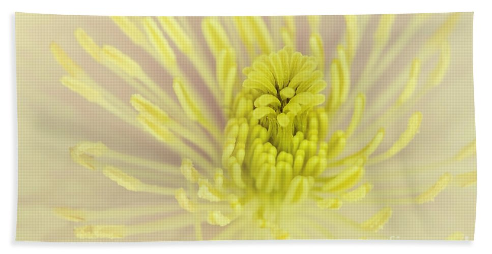 Anniversary Bath Sheet featuring the photograph Flower Centre by Svetlana Sewell