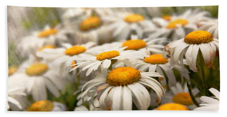 Garden Bath Sheet featuring the photograph Flower - Daisy - Not Quite Fresh As A Daisy by Mike Savad