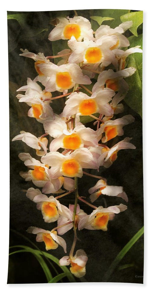 Dendrobium Bath Sheet featuring the photograph Flower - Orchid - Dendrobium Orchid by Mike Savad