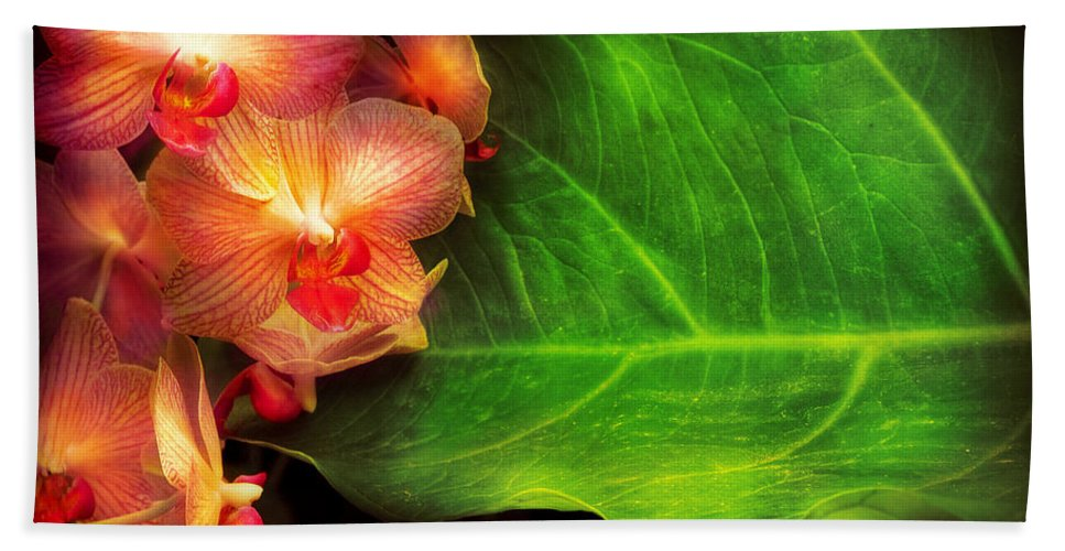 Orchid Bath Sheet featuring the photograph Flower - Orchid - Phalaenopsis Orchids At Rest by Mike Savad