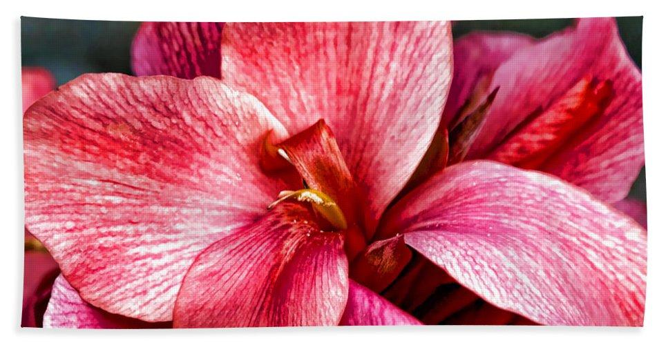 Pink Flowers Bath Sheet featuring the photograph Flower Power In Pink By Diana Sainz by Diana Raquel Sainz