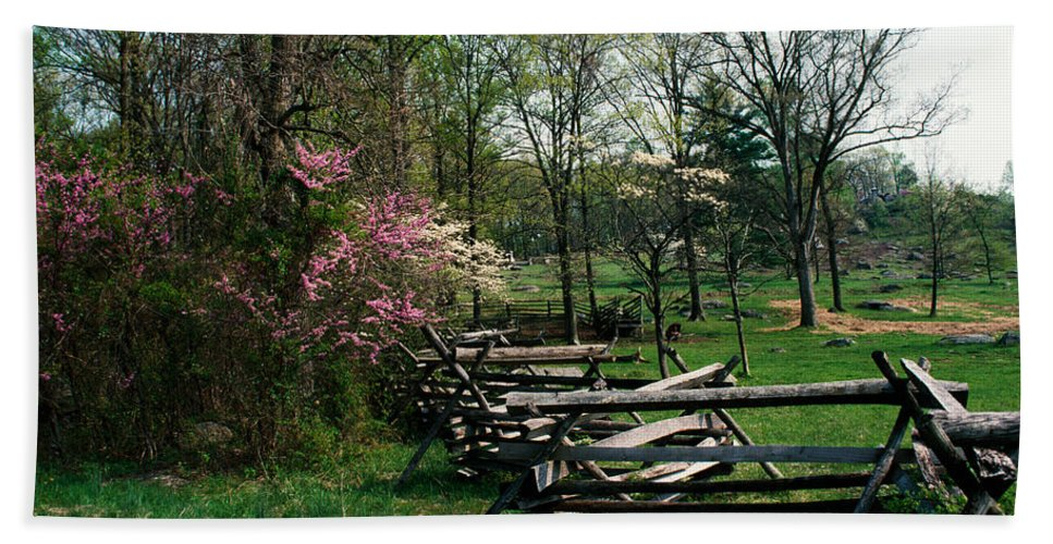 Photography Hand Towel featuring the photograph Flowering Trees In Bloom Along Fence by Panoramic Images