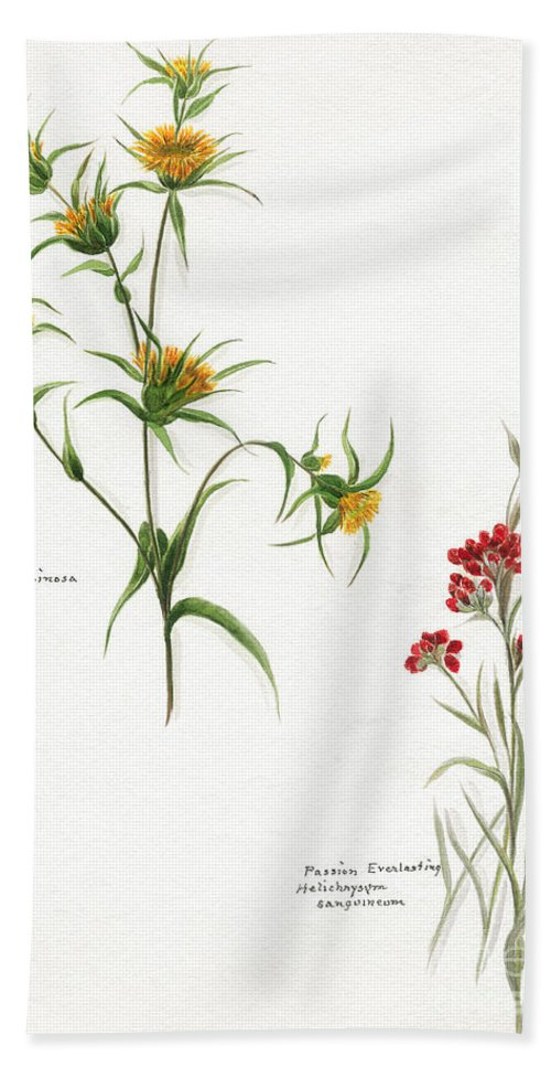 Flower Bath Sheet featuring the photograph Flowers 1950 by Granger
