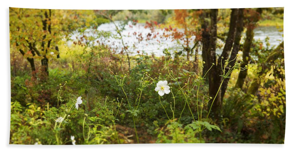 Art Hand Towel featuring the photograph Flowers Along The River In Fall by Belinda Greb