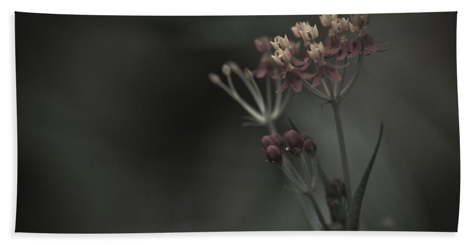 Flowers Bath Sheet featuring the photograph Flowers At Dusk by Bradley R Youngberg