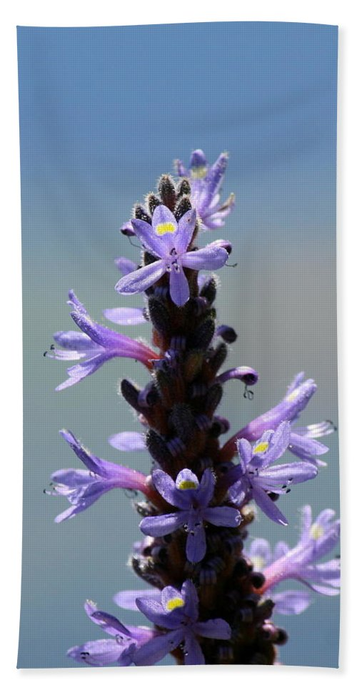 Flower Photography Bath Sheet featuring the photograph Flowers By The River by Neal Eslinger