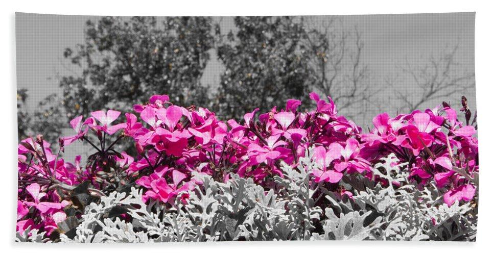 Flower Hand Towel featuring the photograph Flowers Dallas Arboretum V17 by Douglas Barnard
