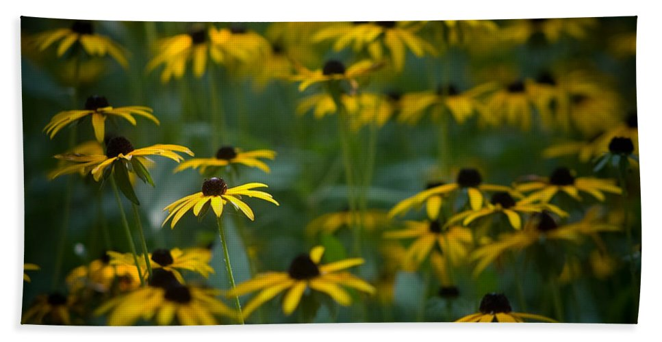 Botanicals Bath Sheet featuring the photograph Flowers In The Fields by Timothy Bischoff