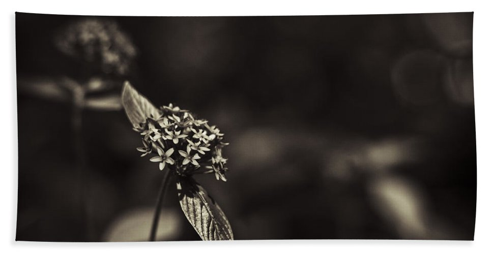 Flowers Bath Sheet featuring the photograph Flowers Sepia by Bradley R Youngberg