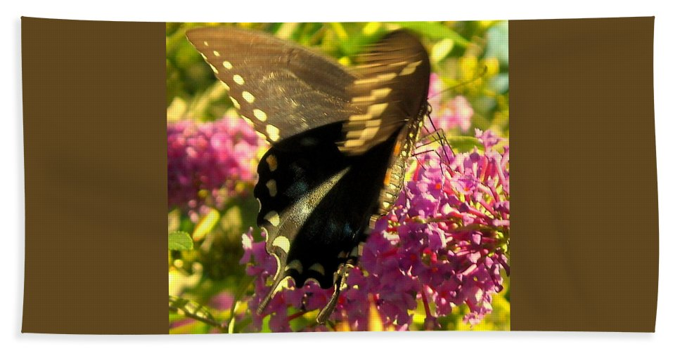 Butterfly Bath Sheet featuring the photograph Fluid Beauty by Tami Quigley