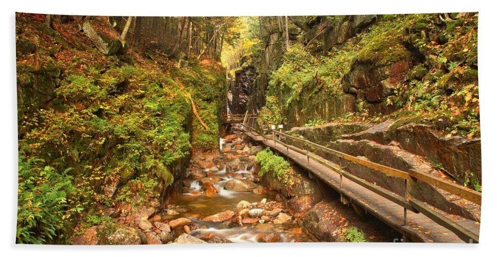 Flume Gorge Bath Sheet featuring the photograph Flume Gorge Landscape by Adam Jewell