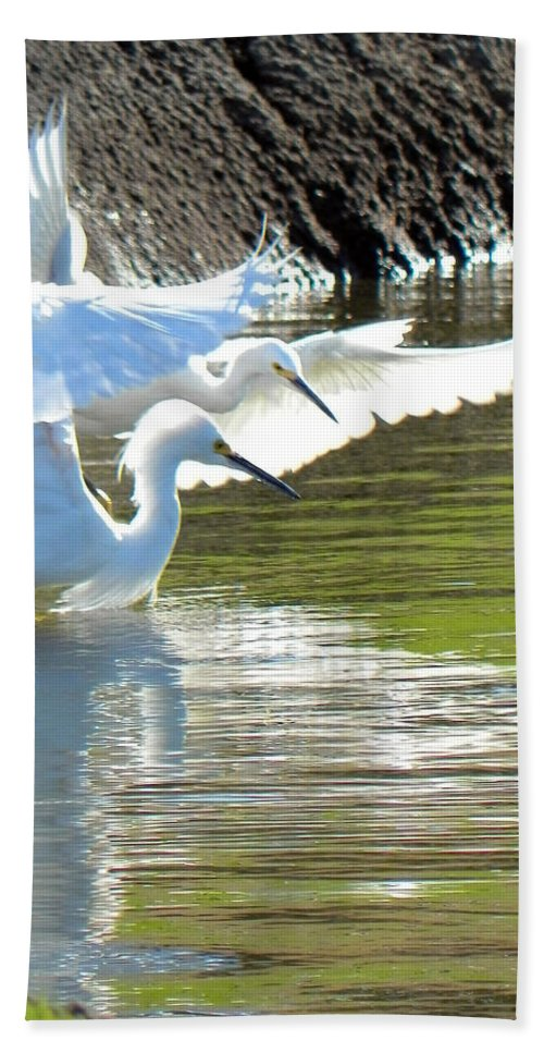 Egret Hand Towel featuring the photograph Flurry by Deb Halloran