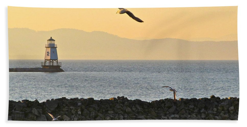 Digital Photography Hand Towel featuring the photograph Fly By by Mike Reilly