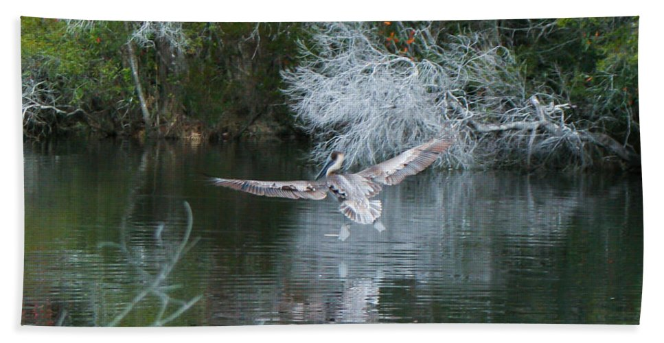 Pelican Flying Hand Towel featuring the photograph Flying Low by Mechala Matthews
