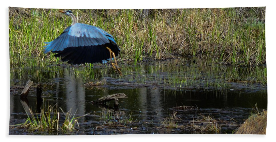 Great Blue Heron Bath Sheet featuring the photograph Flying Parasol by Mim White