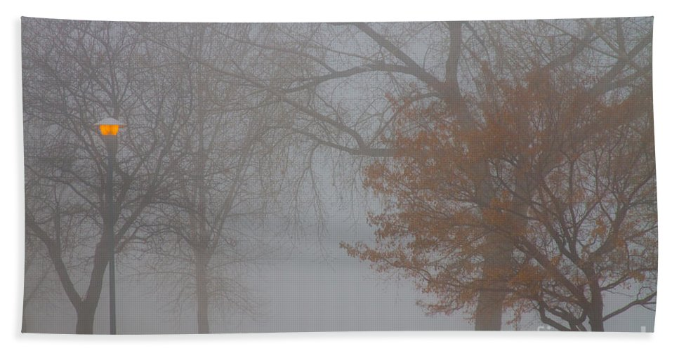 Fog Bath Sheet featuring the photograph Foggy Lake View by James BO Insogna