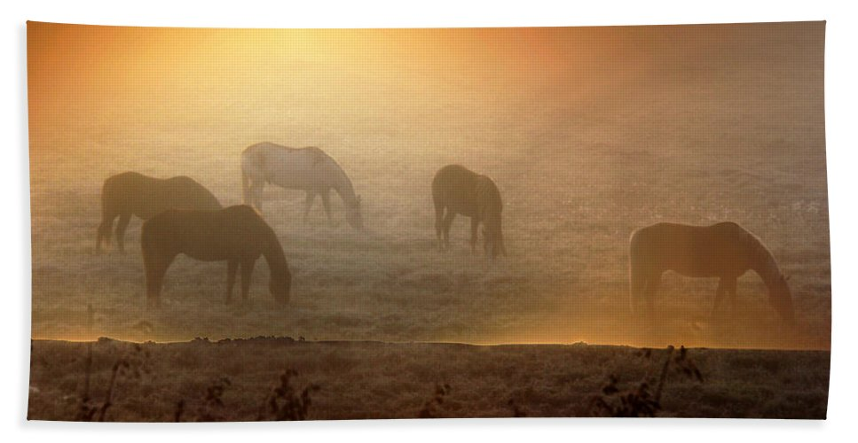 Horses Hand Towel featuring the photograph Foggy Morning Pasture Time by Andrea Lawrence