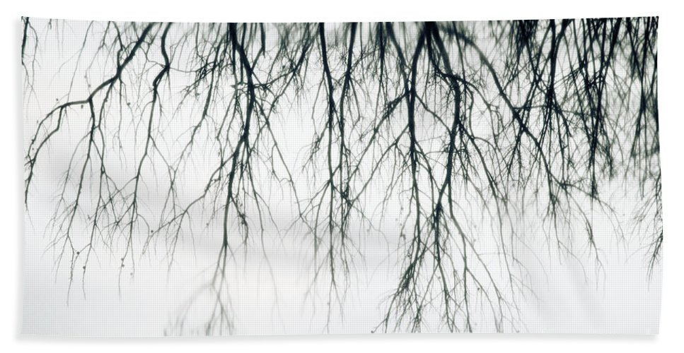 Photography Bath Sheet featuring the photograph Foggy Reflection by Traci Law