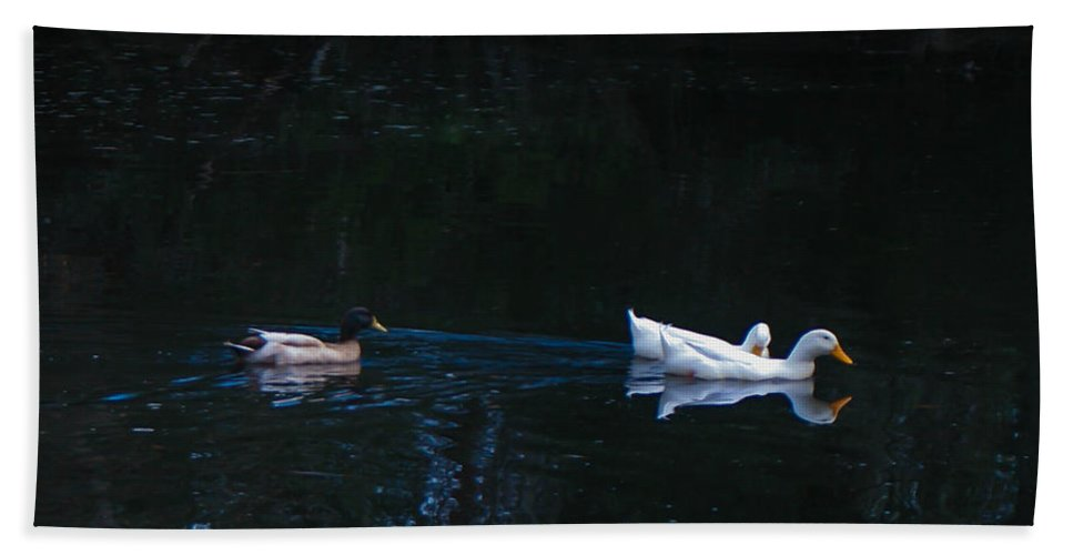 Ducks Swimming Hand Towel featuring the photograph Follow The Leader by Mechala Matthews