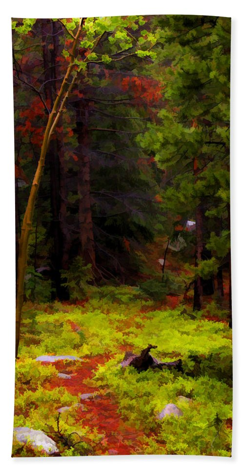 Forest Bath Sheet featuring the photograph Follow The Trail by David Sanchez