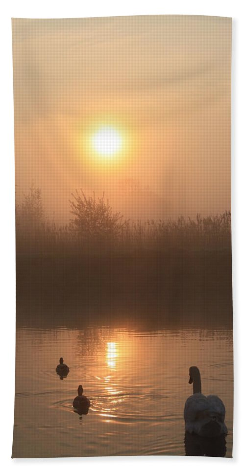 Nature Bath Sheet featuring the photograph Follow Us by Linsey Williams