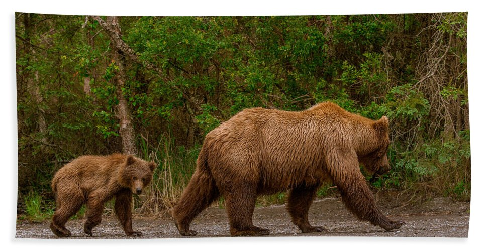 Alaska Hand Towel featuring the photograph Following Mom Closely by Joan Wallner