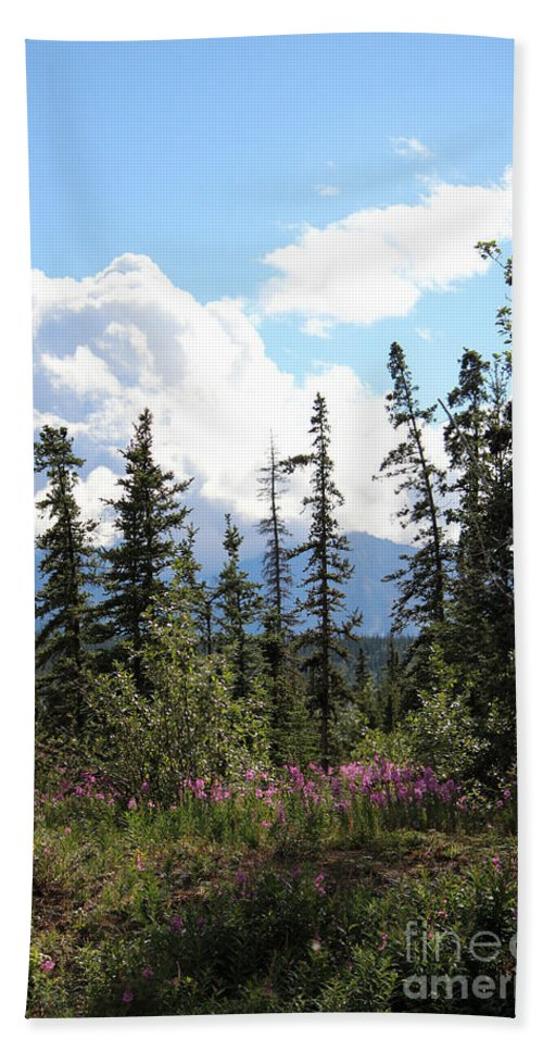 Serenity Hand Towel featuring the photograph For Spacious Skies by Stacey May