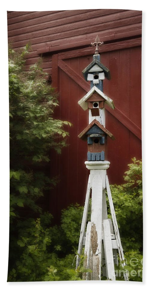 Barn Hand Towel featuring the photograph For The Birds by Margie Hurwich
