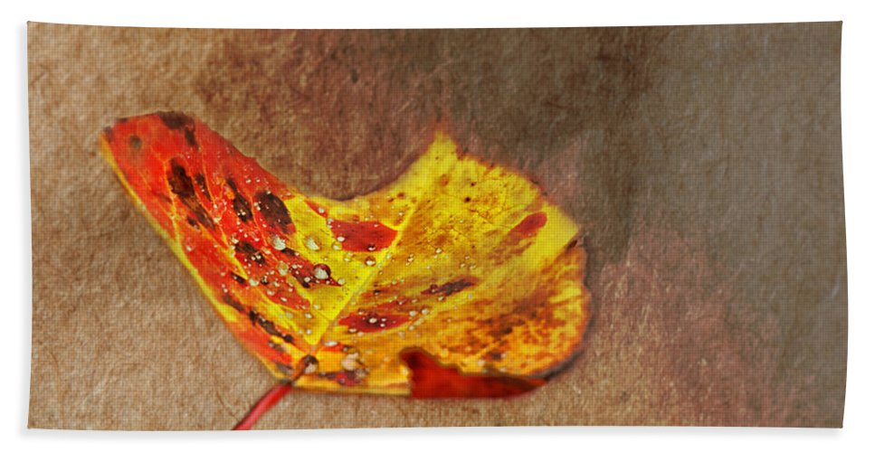 Fall Leaf Bath Sheet featuring the photograph Forest Art by Susan Capuano
