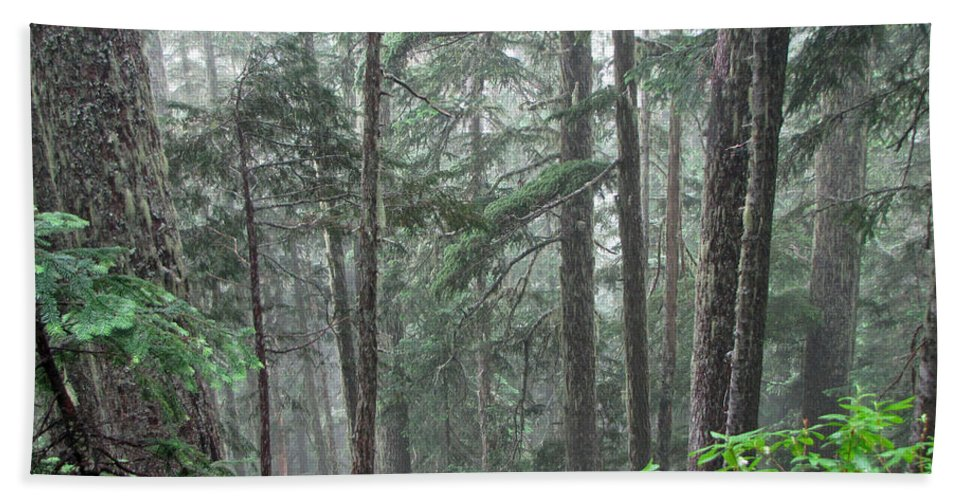 Trees Hand Towel featuring the photograph Forest Bluff by Tikvah's Hope