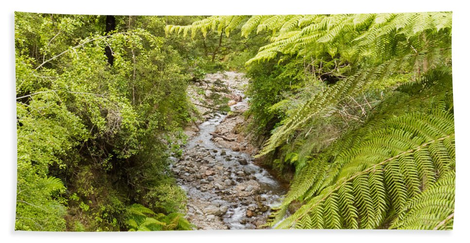 South Island Bath Sheet featuring the photograph Forest Creek In Lush Rainforest Jungle Of Nz by Stephan Pietzko
