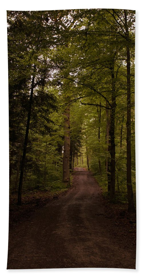 Entry Hand Towel featuring the photograph Forest Entry by Miguel Winterpacht