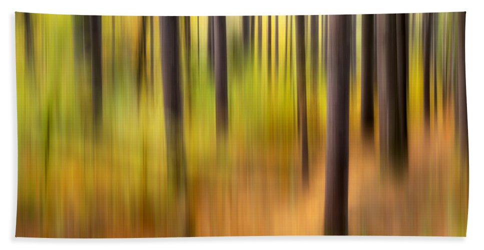Abstract Bath Sheet featuring the photograph Forest Fire by Bill Wakeley