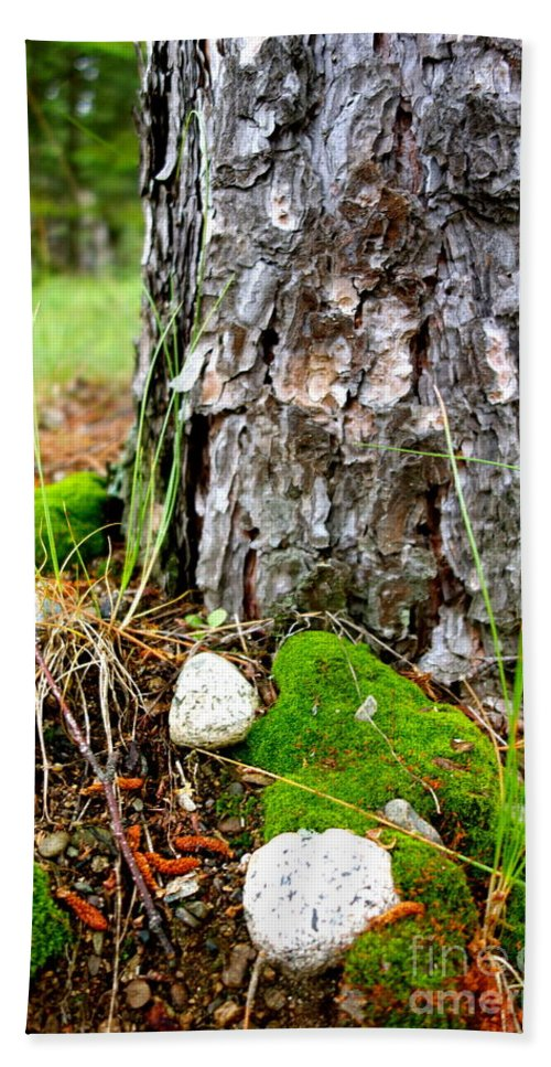 Forest Hand Towel featuring the photograph Forest Floor by Jacqueline Athmann