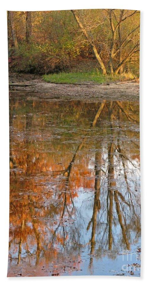 Autumn Bath Sheet featuring the photograph Forest Glow by Ann Horn