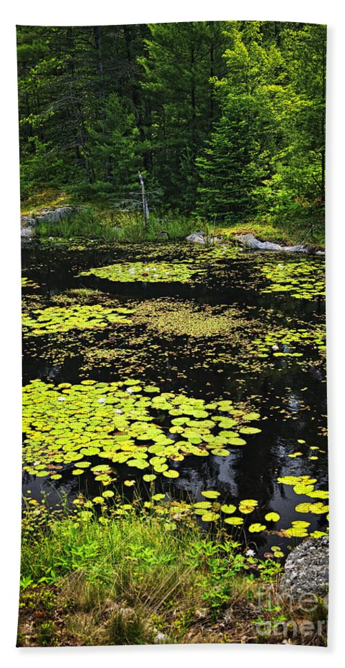 Lake Bath Sheet featuring the photograph Forest Lake With Lily Pads by Elena Elisseeva