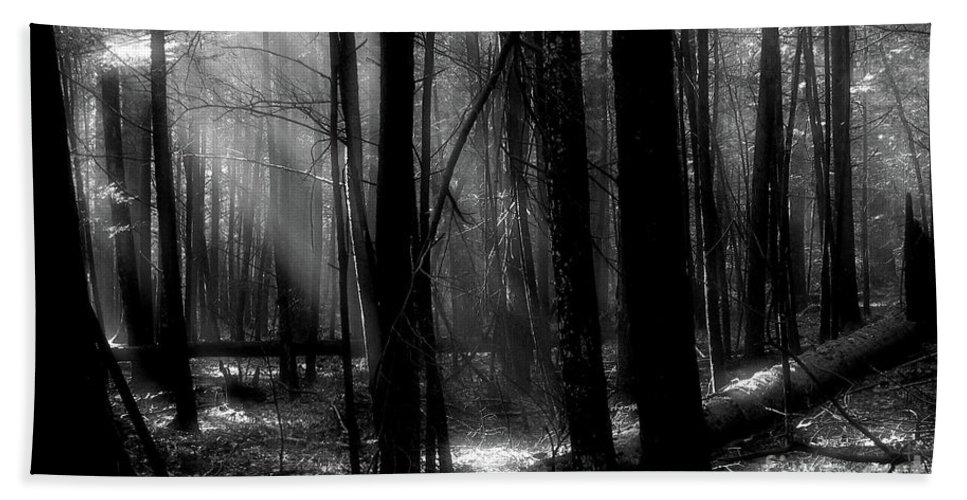 Tress Bath Sheet featuring the photograph Forest Light In Black And White by Douglas Stucky