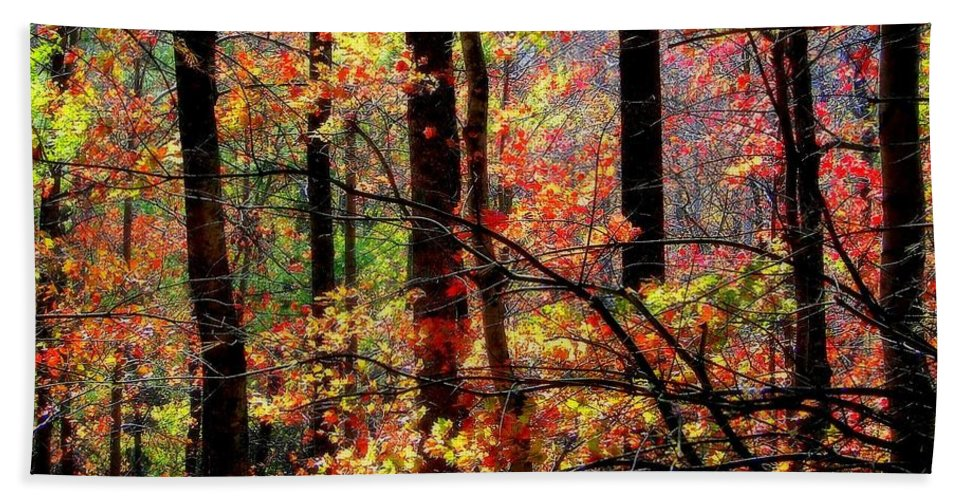 Autumn Reflections Bath Sheet featuring the photograph Color The Forest by Karen Wiles